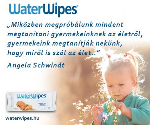 WaterWipes Idézetek Album 2018 04