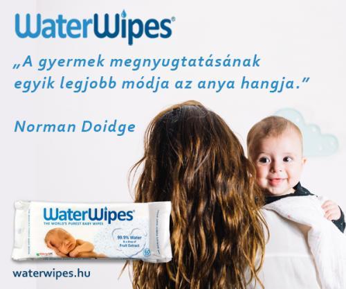 WaterWipes Idézetek Album 2018 08