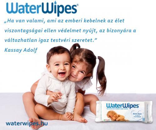 WaterWipes Idézetek Album 2018 14