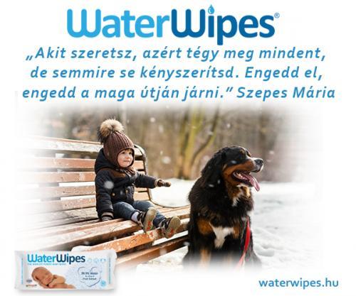 WaterWipes Idézetek Album 2018 27